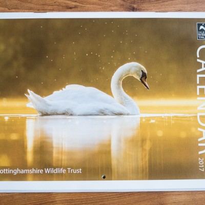 attenborough-nature-reserve-2017-calendar-1