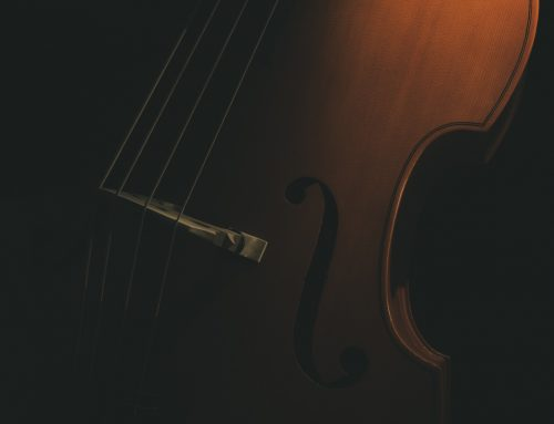 Lockdown photo shoot 1 – Double Bass